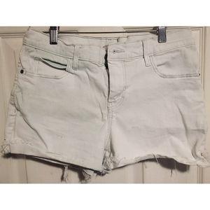 Light Green Tinted Jean Shorts